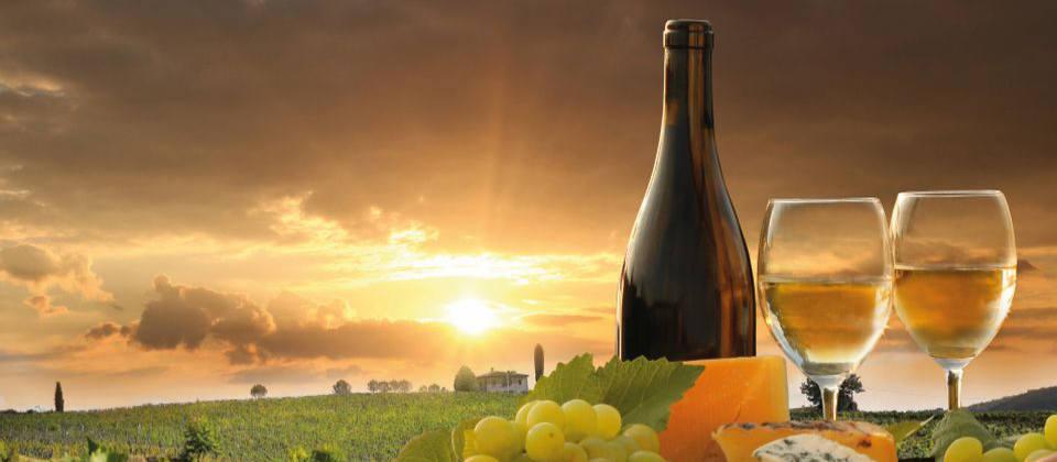 Lust auf Italien: Wein Toskana Monte Cucco
