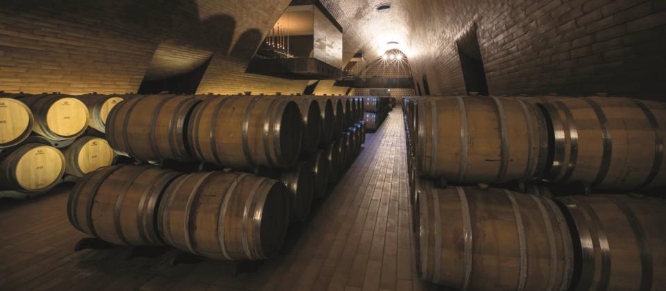 Lust auf Italien: Wein rund um den Gardasee