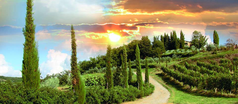 Lust auf Italien, Reisen, Toskana