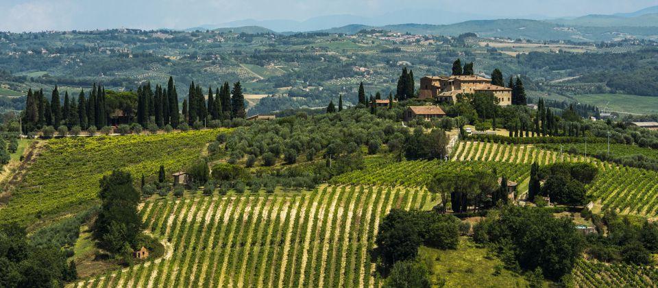 Vernaccia San Gimignano _ Beitragsbild