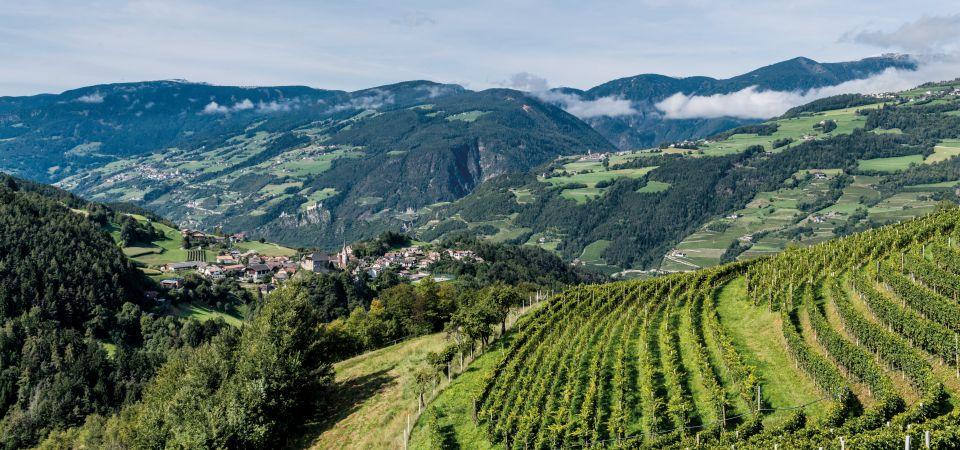 Eisacktal Wein Klima 960