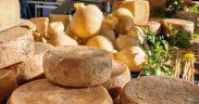 Sardische Käsesorten Beitragsbild