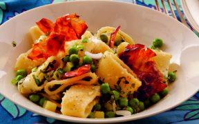 Calamarata verde Beitragsbild