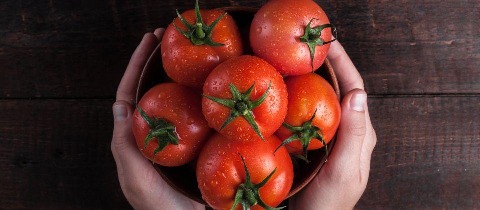 Beitragsbild Das Tomaten Museum in Parma Emilia Romagna