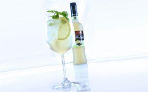 Roner Hugo Cocktail-Rezept