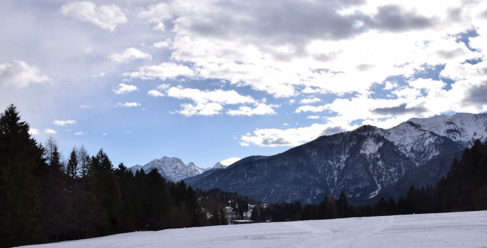 Fließtext 1 Forni di Sopra Friaul Julisch Venetien Winter Ski